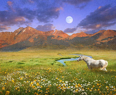 Moon Rise Poster Photograph - Wide World Of Abundance, Wild Horse by R christopher Vest