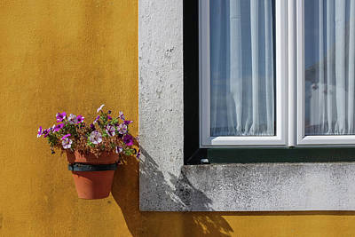 Photograph - Window With A Vase by Carlos Caetano