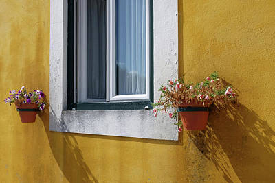 Photograph - Window With Vases by Carlos Caetano