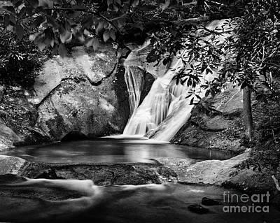 Photograph - Widows Creek 1 by Patrick M Lynch