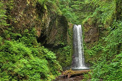 Photograph - Wiesendanger Falls by Ken Aaron