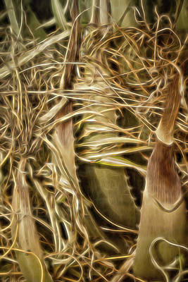 Digital Art - Wild Abandon by Becky Titus