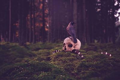 Gothic Photograph - Wild And Dark by Tiljo Joseph