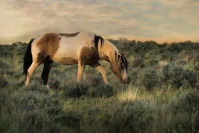 Digital Art - Wild And Free by Lori Deiter