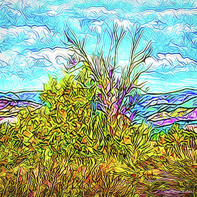 Digital Art - Wild Autumn Hillside - Boulder County Colorado by Joel Bruce Wallach