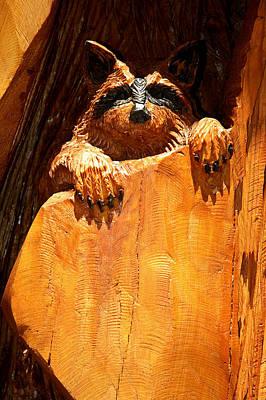 United_states Photograph - Wild Bandit  by LeeAnn McLaneGoetz McLaneGoetzStudioLLCcom