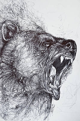 Natural Forces Drawing - Wild Bear  by Eduardo Vazquez
