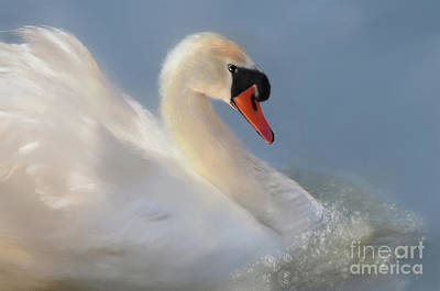 Digital Art - Wild Beauty Close Up by Lois Bryan