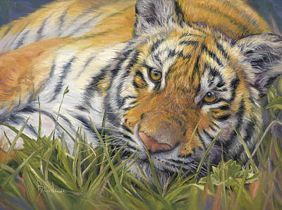Painting - Wild Beauty by Lucie Bilodeau