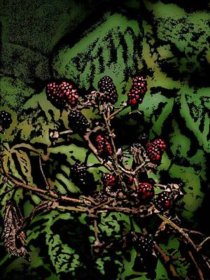 Photograph - Wild Berries by David Lane