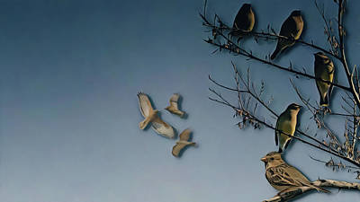 Digital Art - Wild Birds by Philip A Swiderski Jr