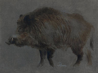 Painting - Wild Boar In Winter Coat by Attila Meszlenyi
