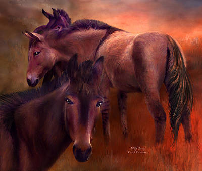 Horse Art Mixed Media - Wild Breed by Carol Cavalaris