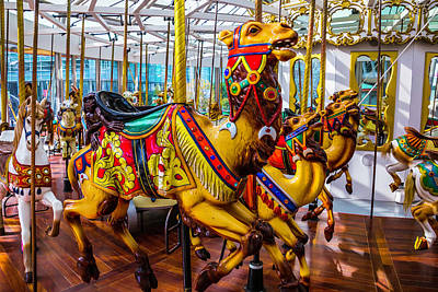 Antique Carousel Photograph - Wild Camel Carrousel Ride by Garry Gay