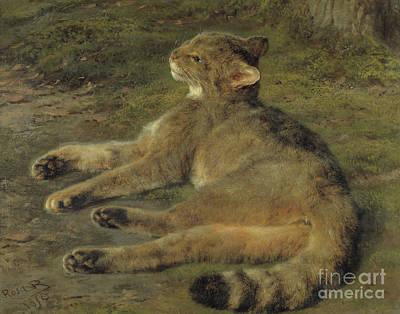 Pussycat Painting - Wild Cat, 1850 by Rosa Bonheur