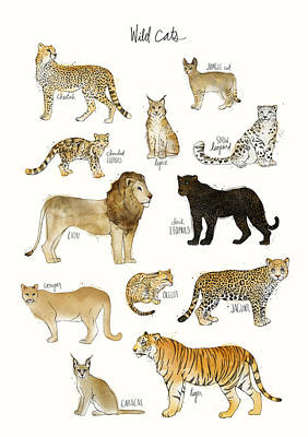Chart Painting - Wild Cats by Amy Hamilton