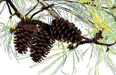 Manip Photograph - Wild Cones by Russ Mullen