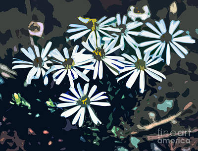 Wild Daisy Art  Art Print by Juls Adams