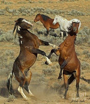 Photograph - Wild Fighting Horses-signed-#2728 by J L Woody Wooden