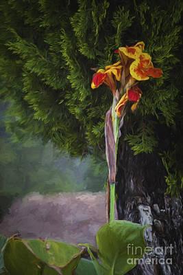 Wild Flower  ... Art Print