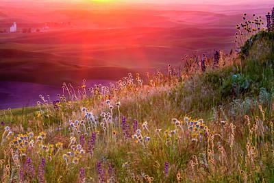 Owls - Wild Flowers  4203 by Karen Celella