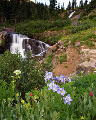 Wild Flowers And Waterfalls Art Print