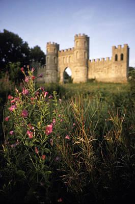 Wild Flowers In Front Of Sham Castle Art Print by Richard Nowitz