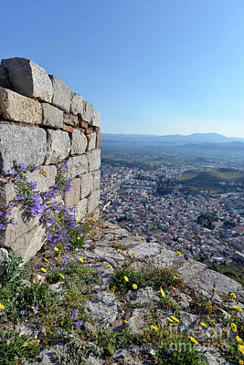 Photograph - Wild Flowers On A Loophole In Palamidi Castle by George Atsametakis