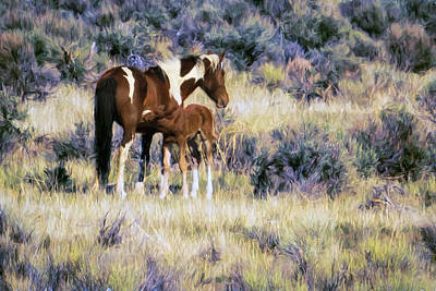 Photograph - Wild Foal Nursing After A Run Painterly by Belinda Greb