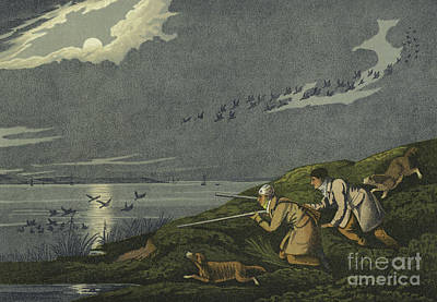 Duck Drawing - Wild Fowl Shooting by Henry Thomas Alken