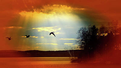 Photograph - Wild Geese Flying Vignette by Mike Breau