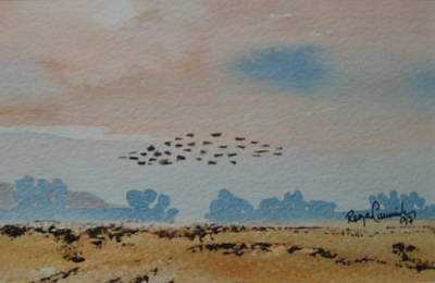 Wild Geese Heading Home. Art Print by Roger Cummiskey