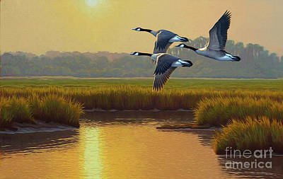 Digital Art - Wild Geese Marsh by Walter Colvin
