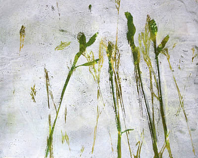 Painting - Wild Grass 2 by Nancy Merkle