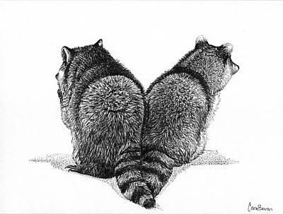 Raccoon Drawing - Wild Heart by Cara Bevan