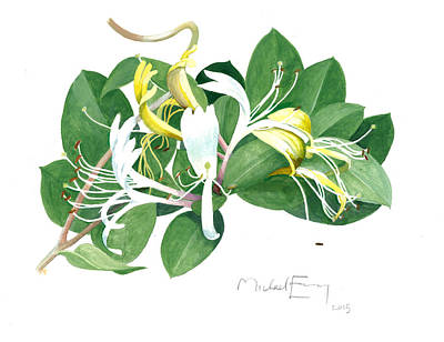 Painting - Honeysuckle by Michael Earney