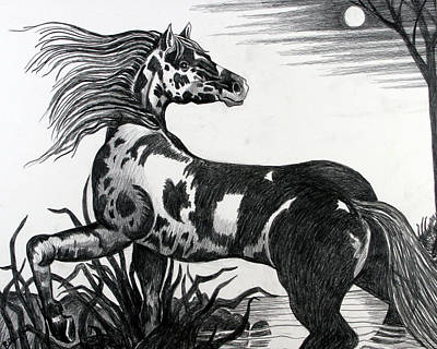 Wild Horse Original by Bob Crawford