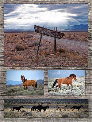 Photograph - Wild Horse Country by Leland D Howard