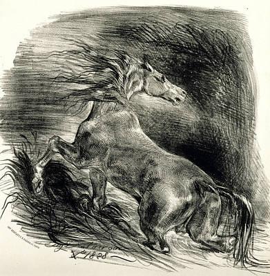 Relief - Wild Horse by Eugene Delacroix