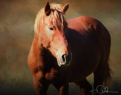 Digital Art - Wild Horse by Gloria Anderson