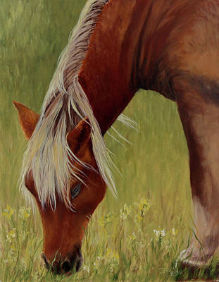 Painting - Wild Horse Grazing by Jan Priddy