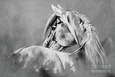 Fineart Painting - Wild Horse   by Gull G