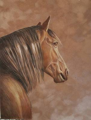 Mixed Media - Wild Horse by Lorraine Foster