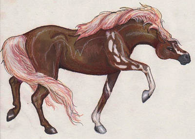 Pegasus Drawing - Wild Horse by Stephanie Small