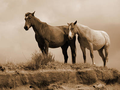 Wild Horses In Western Dakota Art Print