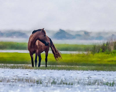 Photograph - Wild Horses Of Shackleford 3 by Erwin Spinner