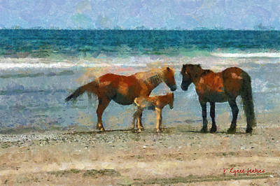 Wild Horses Of The Outer Banks Art Print by Lynne Jenkins