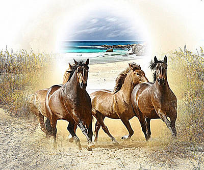 Mixed Media - Wild Horses On The Beach by Clive Littin