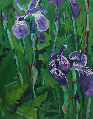 Conservationist Painting - Wild Iris by Phil Chadwick