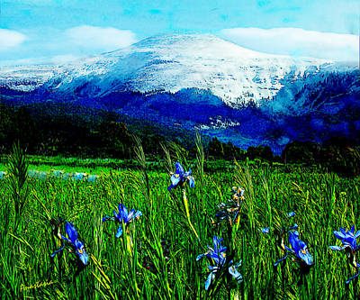 Photograph - Wild Irises And La Jicarita Peak Penasco by Anastasia Savage Ealy